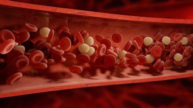 Photo of الكحول في الدم