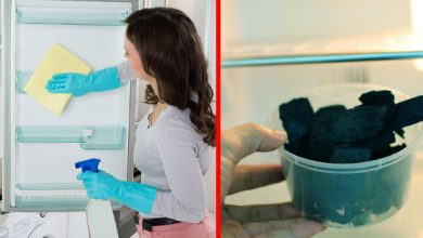 Photo of طريقة تنظيف الثلاجة من الروائح