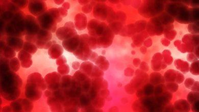 Photo of نسبة الكحول في الدم