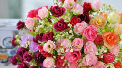 Photo of طريقة حفظ الورد الطبيعي في الثلاجة