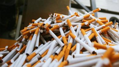 Photo of ماهي احسن انواع السجائر