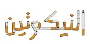 نسبة النيكوتين في السجائر