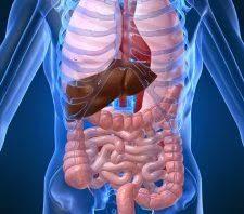 Photo of اعراض خروج السموم من الجسم