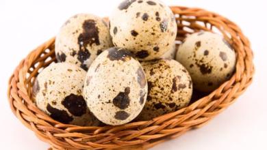 Photo of طريقة طبخ بيض السمان