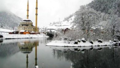 Photo of طرابزون في الشتاء