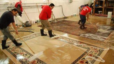 Photo of طريقة تنظيف الموكيت