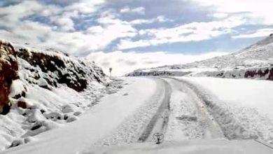Photo of جبل اللوز
