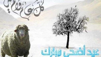 Photo of اول ايام عيد الاضحى